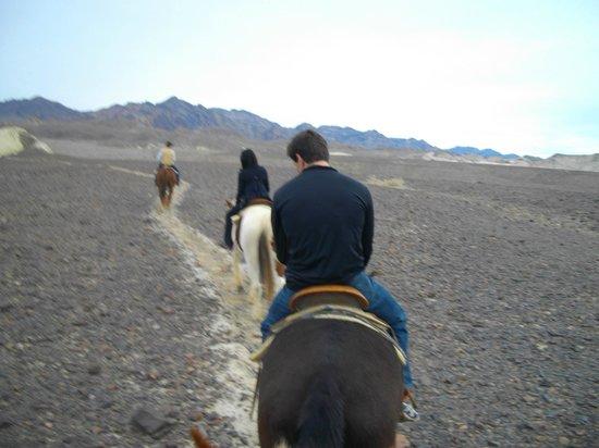 Horseback Ride With Furnace Creek Sables Furnace Creek