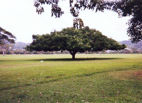 Queen's Park Savannah. - ポート オブ スペイン、クイーンズパーク・サバンナの写真 ...