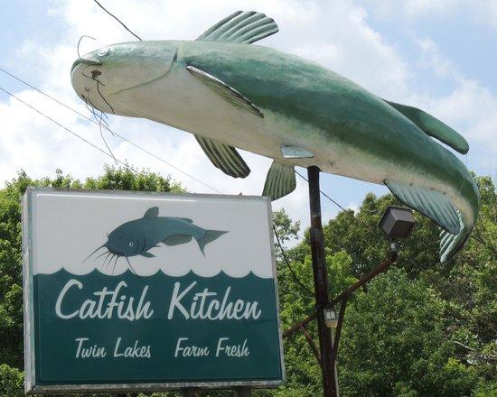 Nothing Special Catfish Kitchen Burns Tripadvisor