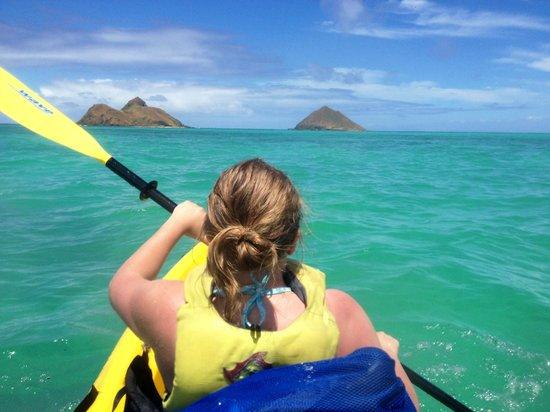 Photos of Kailua Sailboards & Kayaks, Kailua