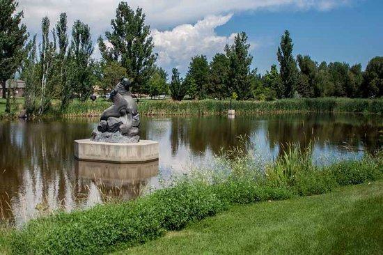 Benson Park Colorado Loveland