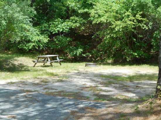 Peters Pond Campground Cape Cod