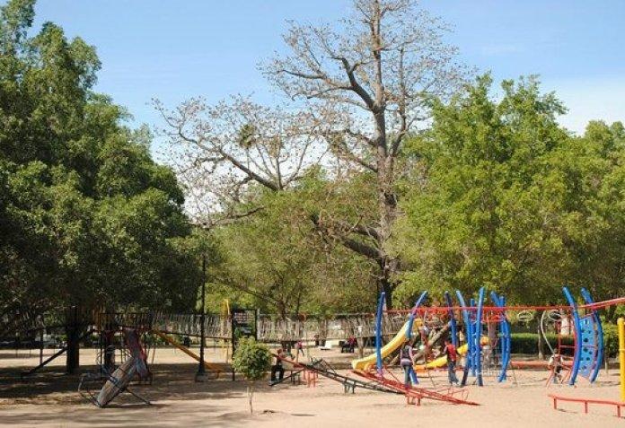 Oficina, se encuentra en la entrada Principal del Parque Sinaloa, sobre el  blvd. Rosales # 750 S - Foto di Jardín Botánico Benjamin Francis Johnston,  Los Mochis - Tripadvisor