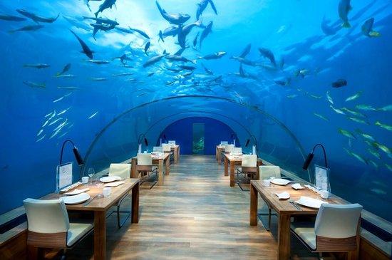 Ithaa Undersea Restaurant - 10 Most Unusual & Strange Restaurants