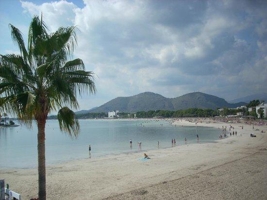 playa de alcudia port d alcudia