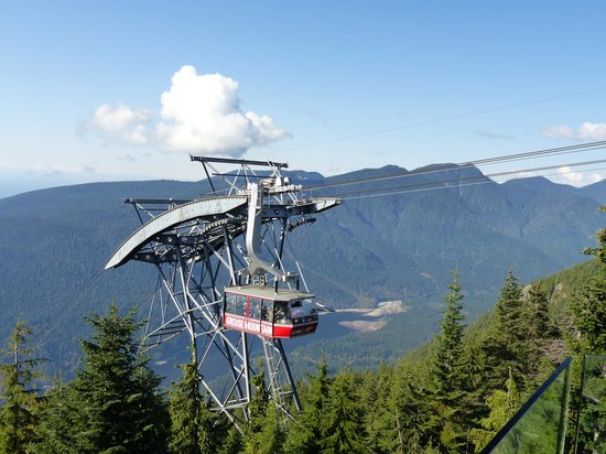 Grouse Mountain Zip Line Review