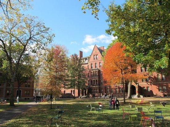 Le campus de l'Université Harvard - Photo de Harvard ...