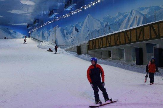 Resultado de imagem para snowboard gramado