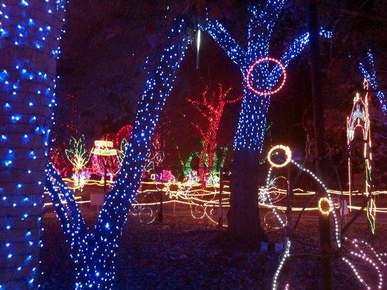 Calm Zoo Bakersfield Christmas Lights