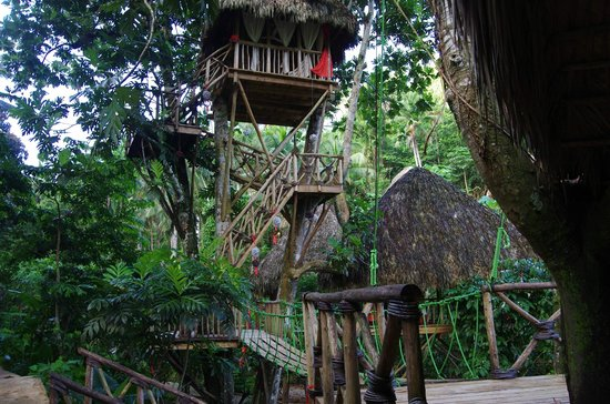 Awesome Picture Of Dominican Tree House Village Santa