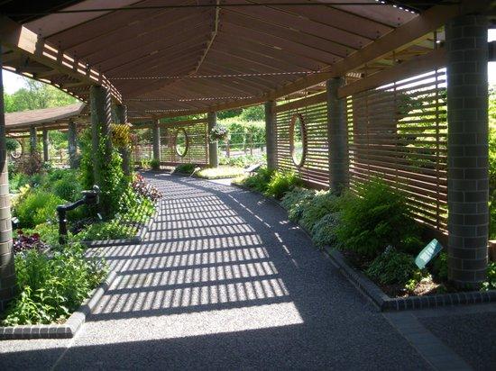 covered garden walkway Covered Walkway - Picture of Missouri Botanical Garden