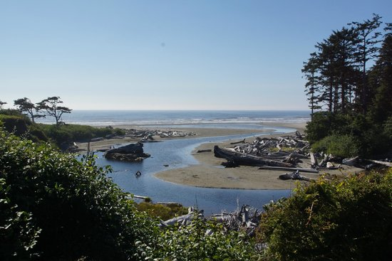 View From The Lodge Picture Of Kalaloch Lodge In Olympic