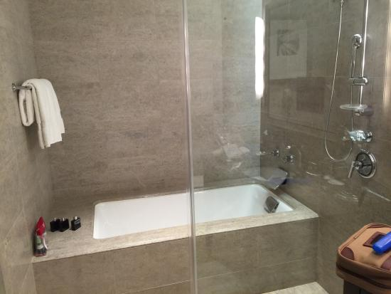 bathtub/shower combo - picture of trump international hotel & tower