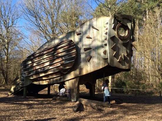 The gruffalo trail is free, but you can pick up an orienteering leaflet with a map for £1.50 if you want to. Owl Play Attraction Habitat Trail Picture Of Alice Holt Forest Farnham Tripadvisor