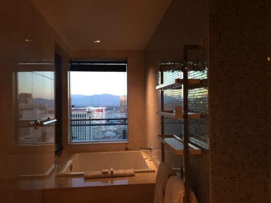 cosmopolitan terrace one bedroom