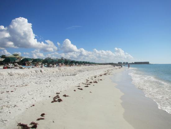 Bonita S Fl Coconut And Hyatt Point Springs Regency Resort
