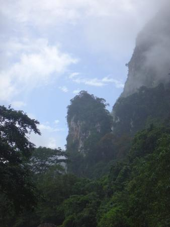 Brume - Picture of Khao Sok National Park, Surat Thani ...
