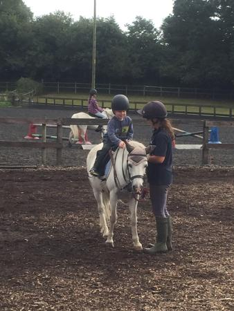 Photo0 Jpg Picture Of Arniss Equestrian Fordingbridge