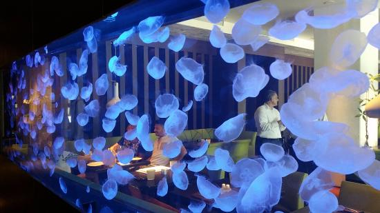 Dinner Restaurants Ft Lauderdale