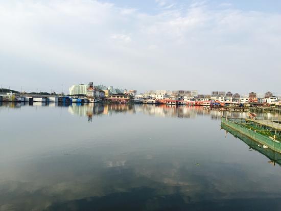 陽澄湖 (崑山) - 旅遊景點評論 - TripAdvisor
