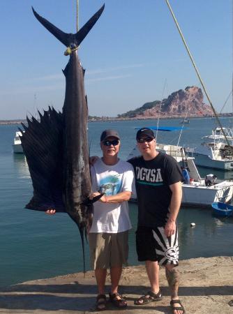 Resultado de imagen de mazatlan sports fishing