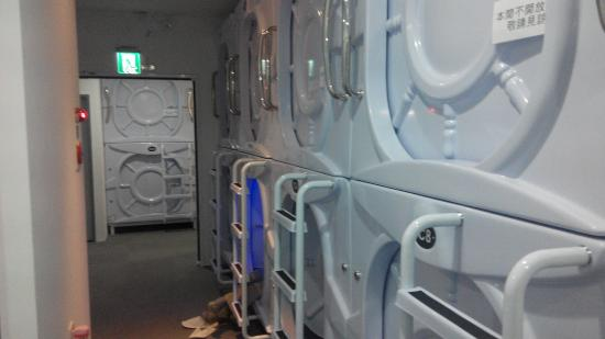 太空艙區 - 臺北市品格子旅店-民權館的圖片 - TripAdvisor
