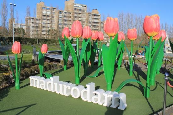 نتيجة بحث الصور عن madurodam
