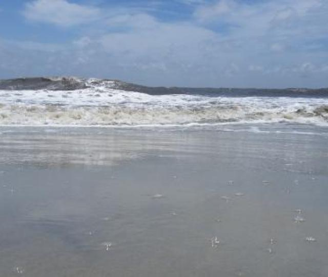 The  Best Things To Do In Saint Simons Island Updated  With Photos Tripadvisor