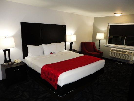 Newly Renovated Business King Interior   Picture of Ramada by     Ramada by Wyndham Tuscaloosa  Newly Renovated Business King Interior