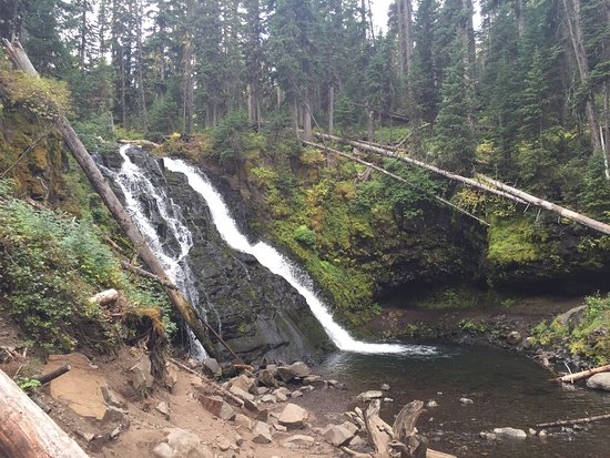 This is an intermediate hike along trillium gap trail. Grotto Falls Picture Of Grotto Falls Trail Bozeman Tripadvisor