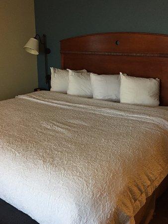 Hampton Inn Suites Bloomington Normal Updated 2018 Prices Hotel Reviews Il Tripadvisor