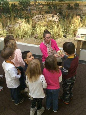 Schisler Museum of Wildlife & Natural History and McMunn Planetarium