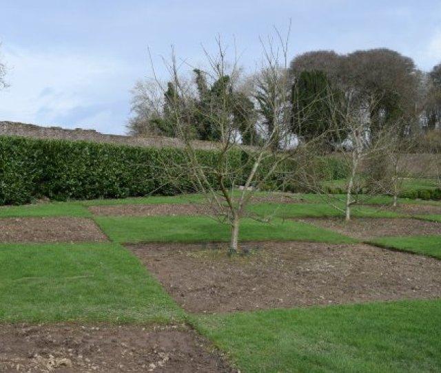Colclough Walled Garden Diamond Shaped Lawns