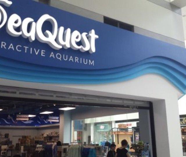 Seaquest Las Vegas Sea Quest
