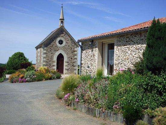 chambres d hotes vignes et loire la chapelle et l entree du studio