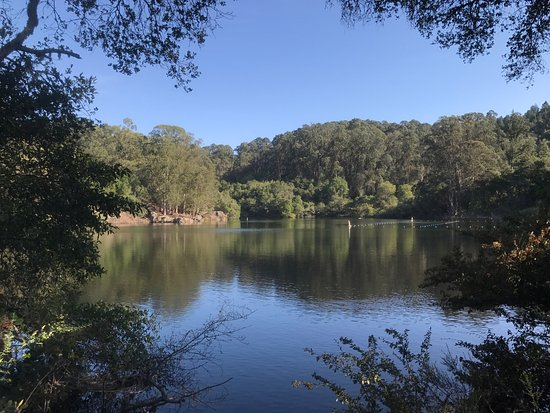 Lake Anza Berkeley 2020 All You Need To Know Before