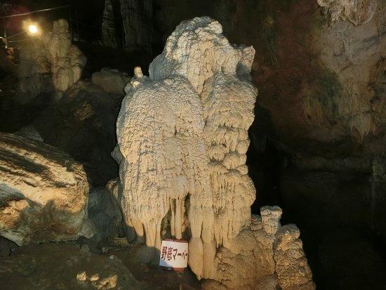 鍾乳石 - 石垣市石垣島鍾乳洞的圖片 - TripAdvisor