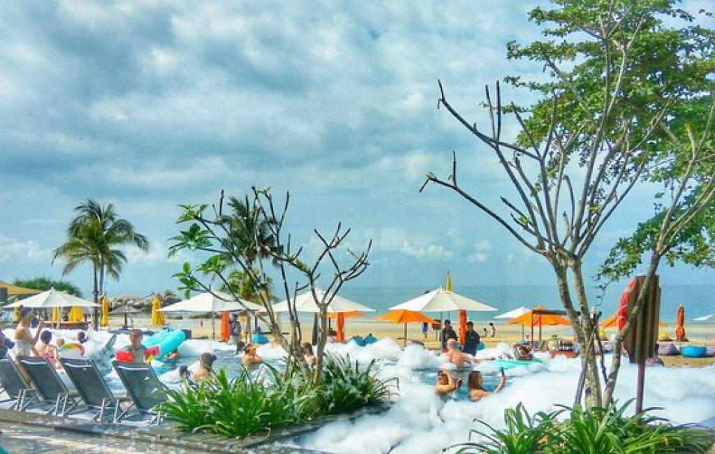 Image result for cassia bintan foam