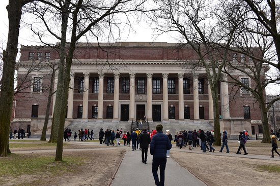 Image result for Widener Memorial Library at Harvard University