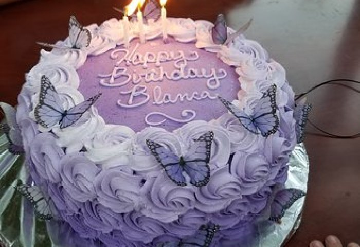 Butterfly Birthday Cake From The Kakery Home Version Picture Of
