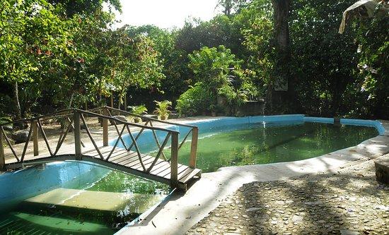 Balneario de agua natural: fotografía de Rancho Don Lulu, República  Dominicana - Tripadvisor