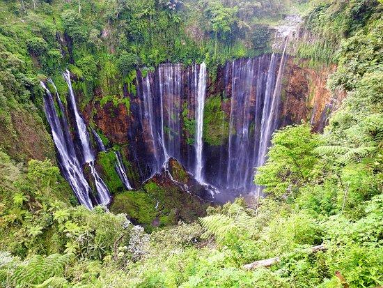 Amazing Waterfall Review Of Tumpak Sewu Waterfall Lumajang Indonesia Tripadvisor