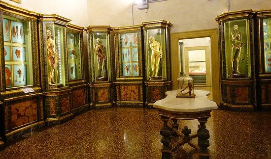 Una joya oculta - Opiniones de viajeros sobre Museo di Palazzo ...