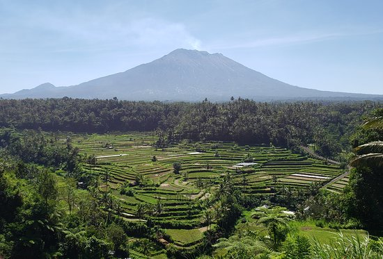 The 10 Best Bali Mountains With Photos Tripadvisor