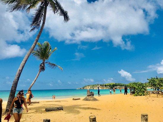 Пляж Макао, Пунта-Кана: лучшие советы перед посещением