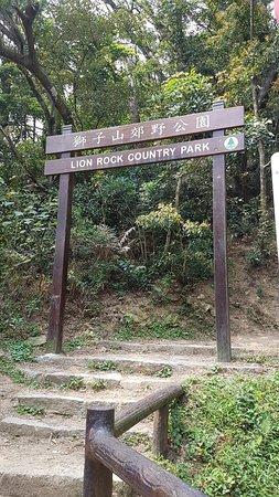 (香港, 中國)獅子山郊野公園 - 旅遊景點評論 - Tripadvisor