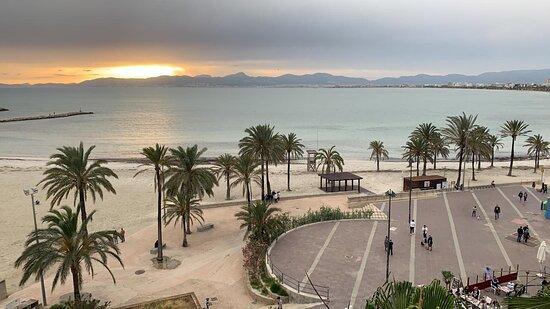 playa de palma el arenal palma de