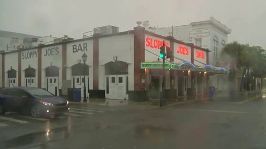 Tropical Storm Elsa makes landfall on north Florida's Gulf Coast 4