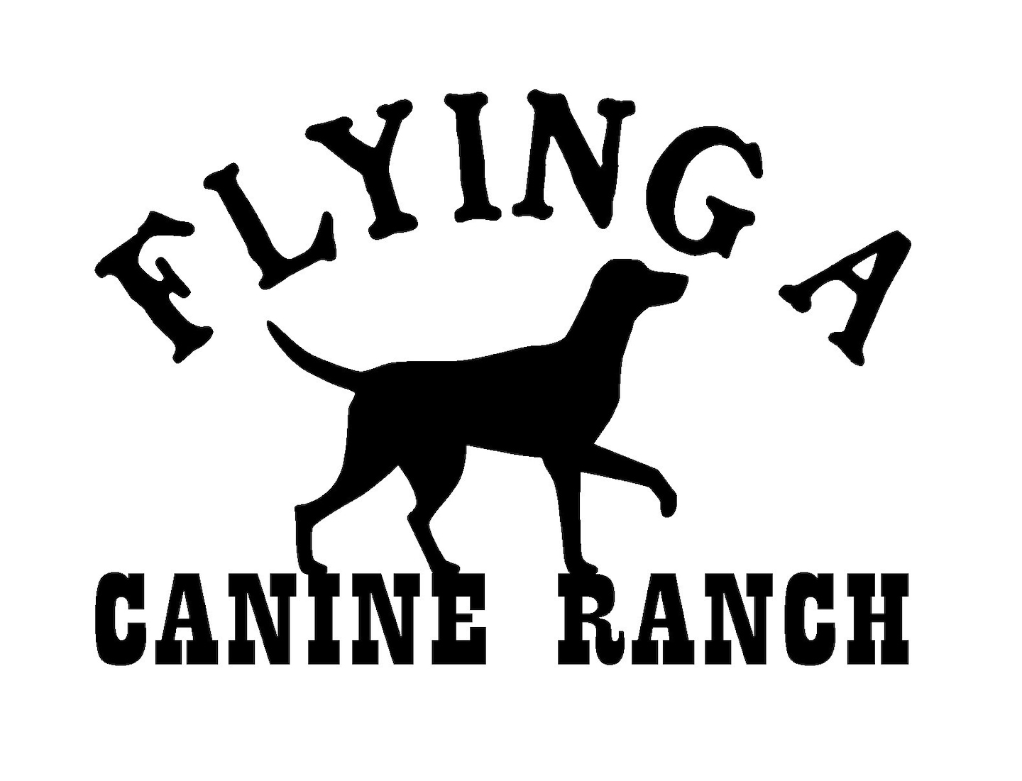 Flying A Canine Ranch Reviews