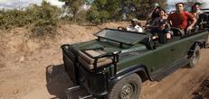Explore Cape Town & Kruger National Park